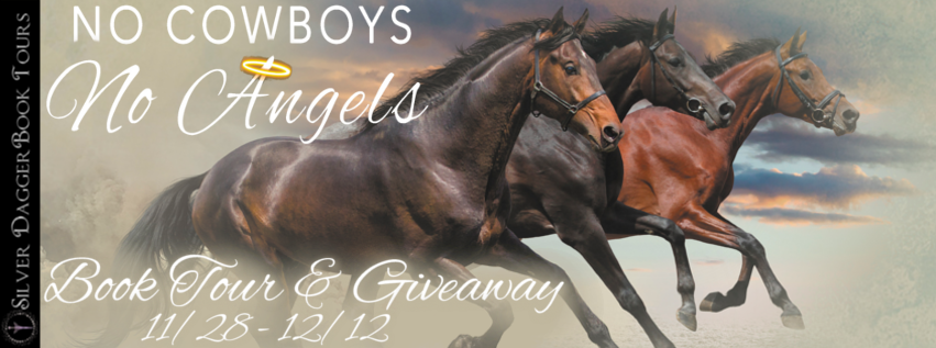 Book Tour Banner for romantic suspense novel No Cowboys No Angels from The Mystery Angel Romances by Petie McCarty with a Book Tour Giveaway